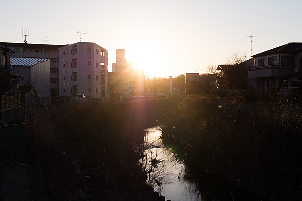 植田川と夕陽