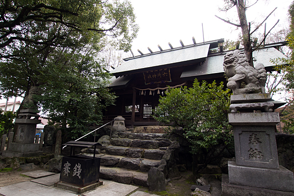 比良六所神社狛犬と拝殿前