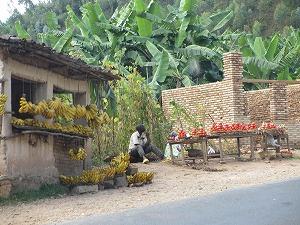 Burundi (4)