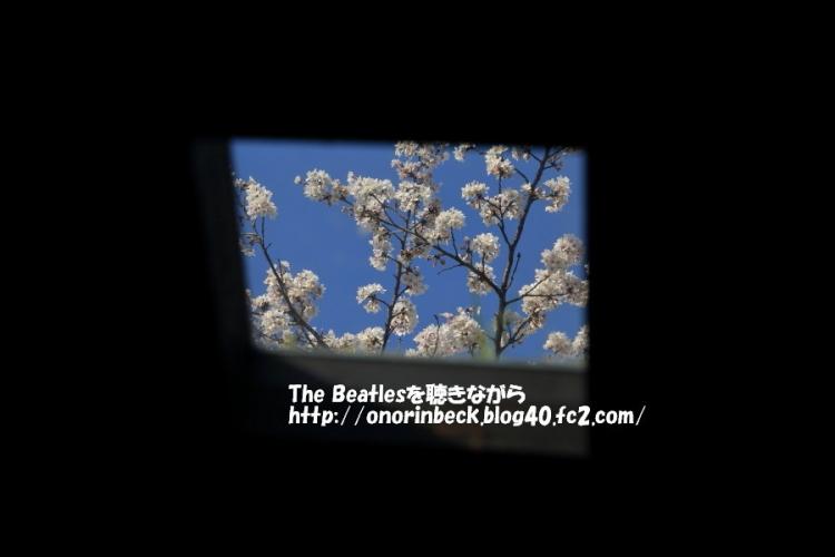 IMG_2017_04_14_9999_475.jpg