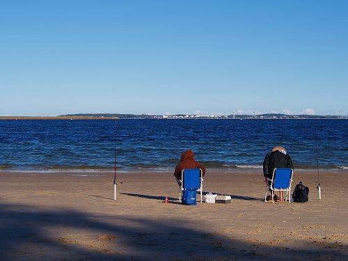 レディーロビンソンビーチ