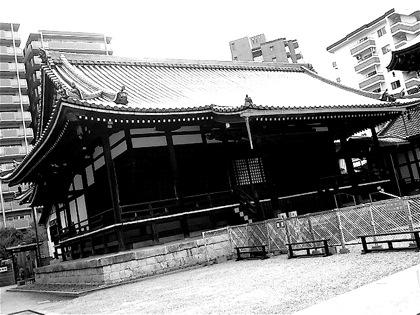 kakumanjiNEC_0419.jpg