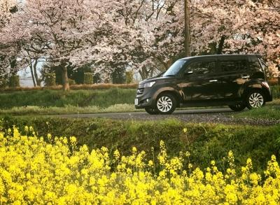 お花見ドライブ2017 4
