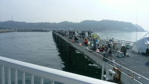 豊浜釣り1