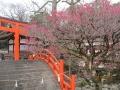 京都旅館こうろ4