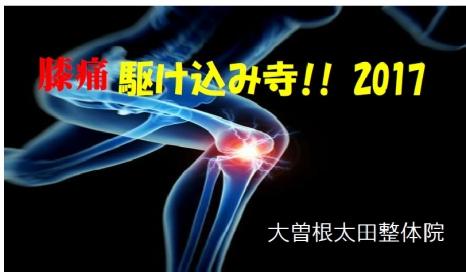 膝痛駆け込み寺2017a