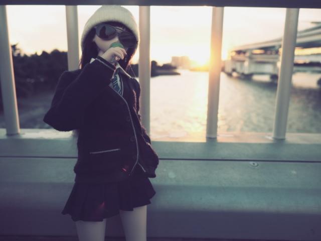 sireb46.jpg