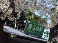 極楽寺駅01