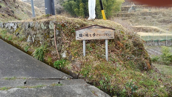 2017_03_30_三多気の桜_106_2017_04_22
