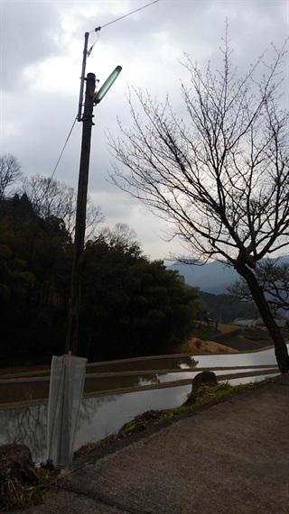2017_03_30_三多気の桜_181_2017_04_23