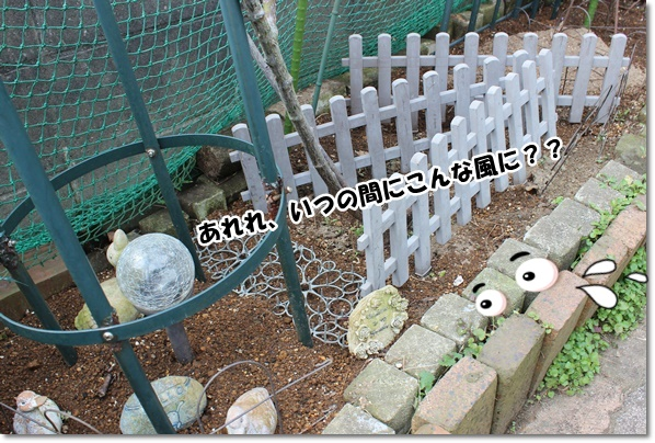 IMG_0894-3.jpg