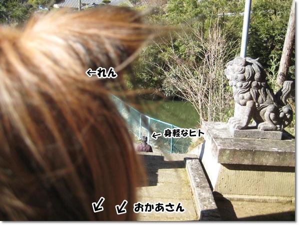 IMG_7992-3.jpg