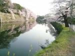 hikone4.jpg