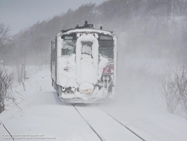 雪まみれのキハ54