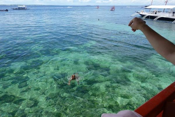 ハドサンビーチ