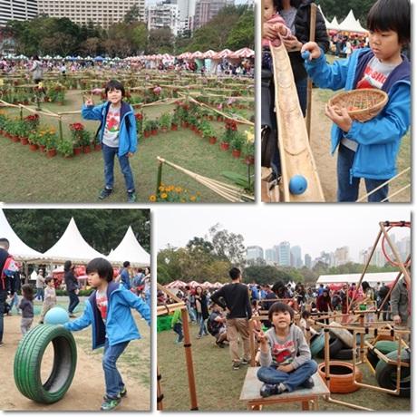 flower show 2017-2