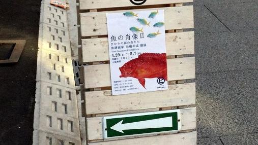 魚の肖像Ⅱ 2017-05-02 (1)