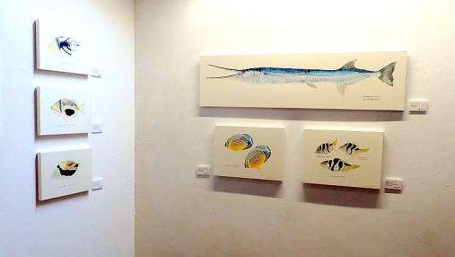 魚の肖像Ⅱ 2017-05-02 (6)