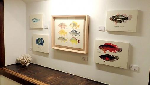 魚の肖像Ⅱ 2017-05-02 (7)