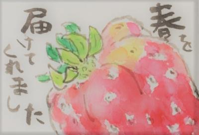 いちご2 (2)