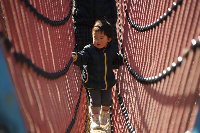アスレチックつり橋を渡る子供