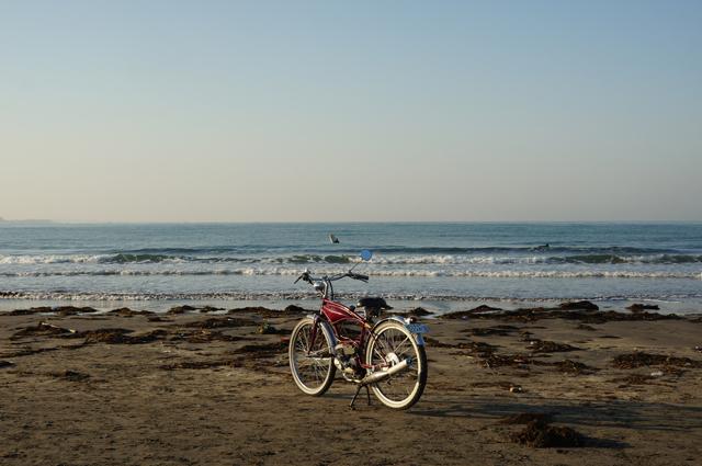 フキプランニングFK310 LAⅢ 、と由比ヶ浜の朝