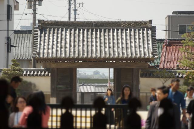 大樹寺から見える岡崎城