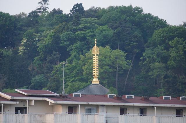 朝日を浴びる高幡不動の塔