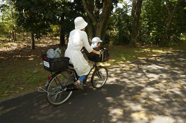 自転車で園内を回遊