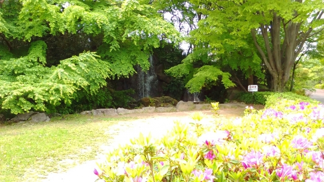 府中郷土の森の滝