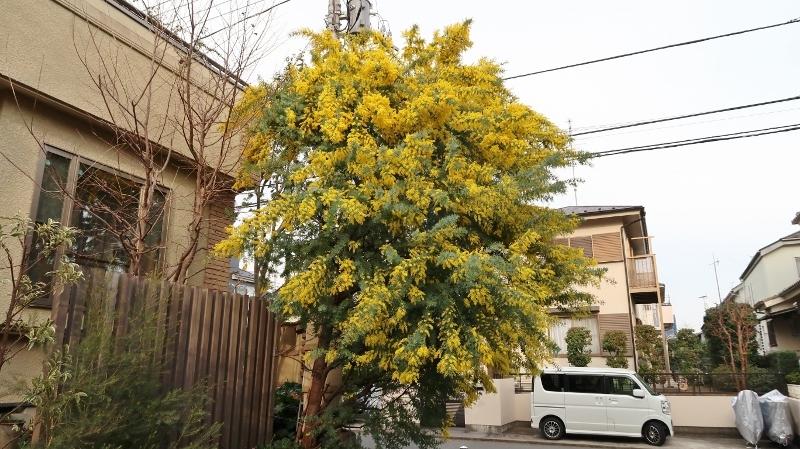 01201702261607荏子田2丁目 (800x449)