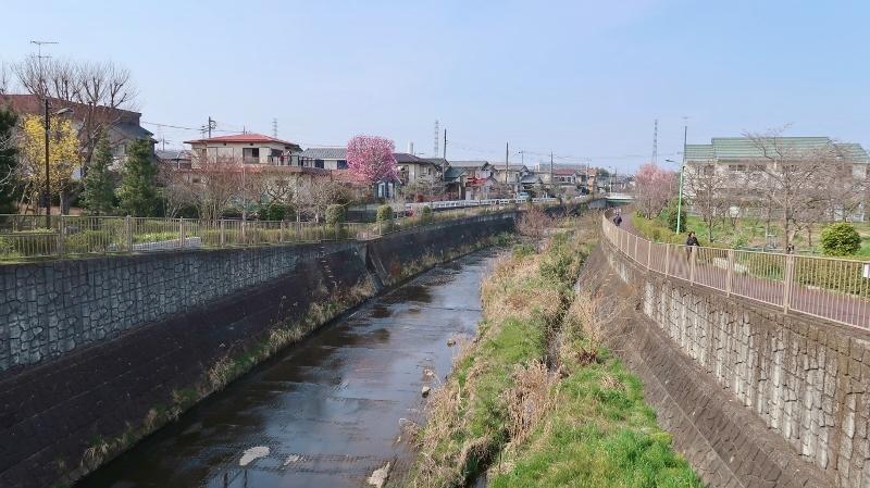 01IMG_9309高瀬橋 (800x449)