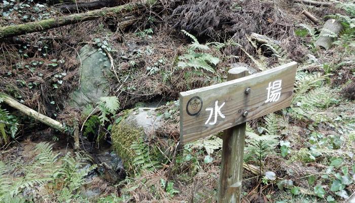 2017,4,2雷山~井原山-7