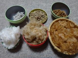 2016年収穫綿