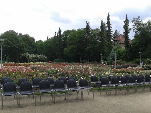 "Rose Garden "" Rozanka "" 06 2016"