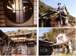 0225natukyagi13.jpg