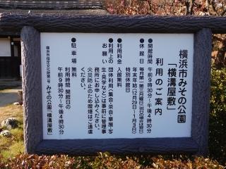 0225ymisonokhina2.jpg