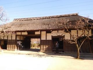 0225ymisonokhina3.jpg