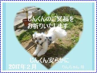 __1171じんくん23