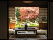 日本庭園³