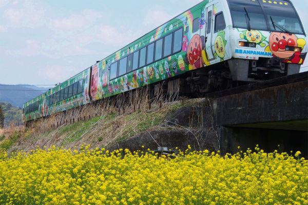 ナノハナ ( 菜の花 )とアンパンマン列車