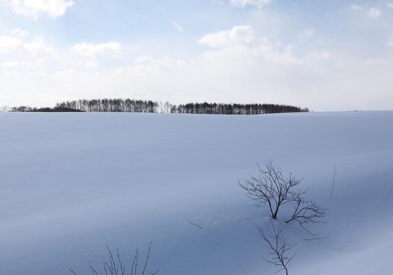 雪の風景2170218