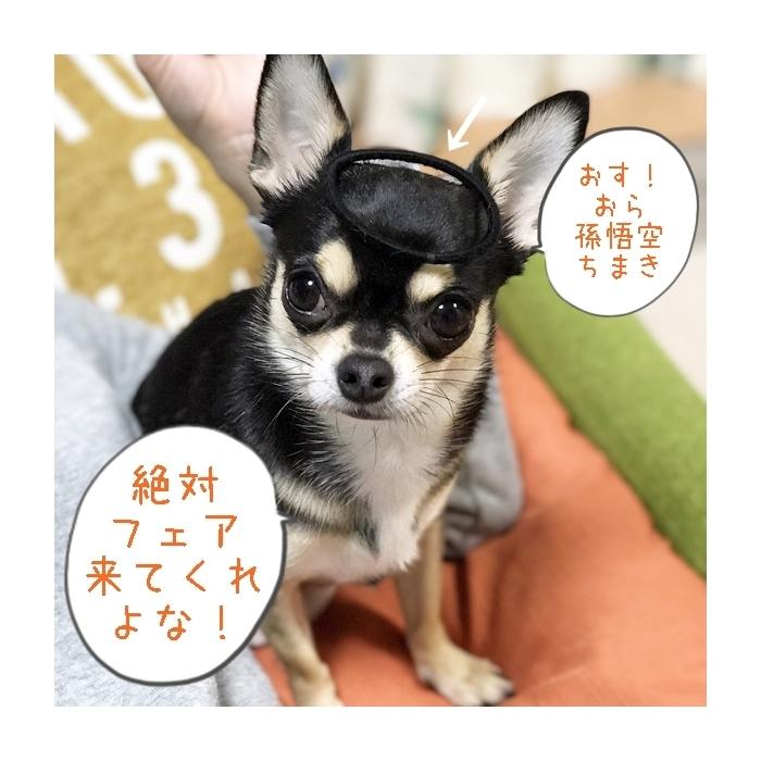 2017-04-13 ちまき (2) ブログ用