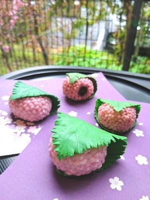 桜餅am2
