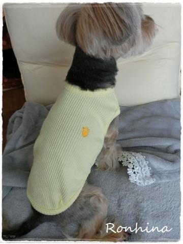 黄色の洋服④