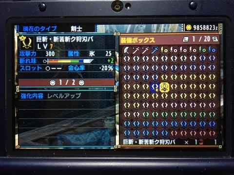 IMG_3209s.jpg