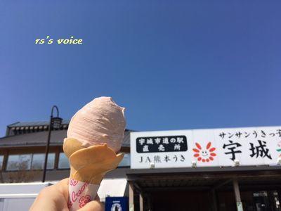 amakusa4.jpg