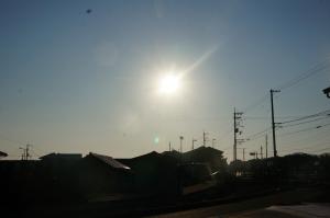 眩しい陽21