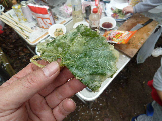 蕗の葉の天ぷら