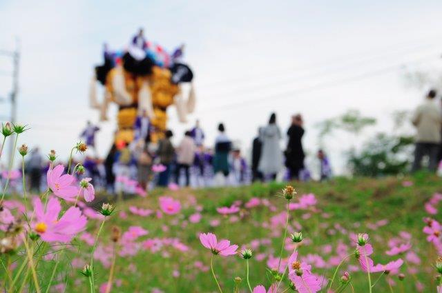四国中央市 土居秋祭り 八日市太鼓台 2016年関川河川敷